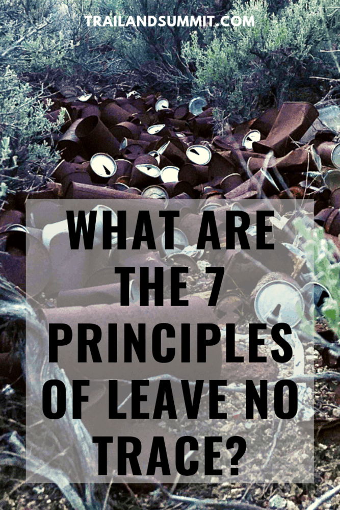 What Are the Seven Principles of Leave No Trace?