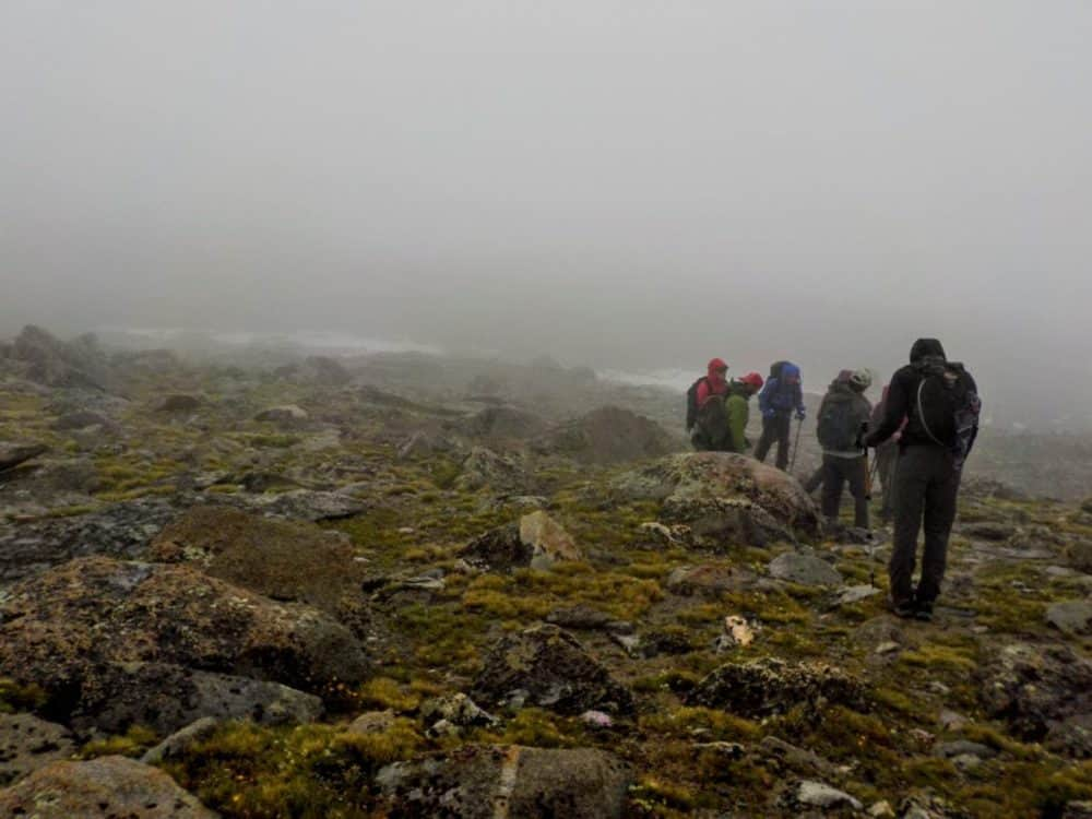 Foggy and raining conditions with hikers in a grassy meadow