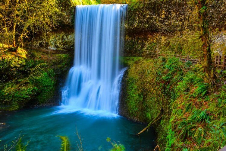best waterfall hikes near portland oregon