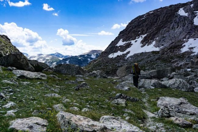 Hikers walking through an alpine meadow in the Wind River Range