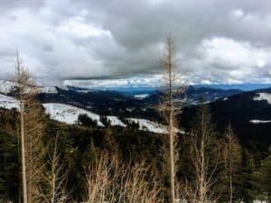 winter in northern colorado snowshoe trails