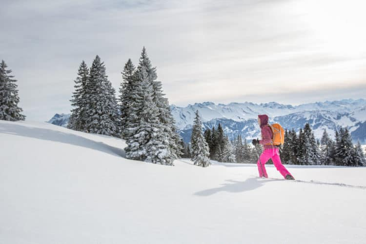 where to snowshoe in northern colorado