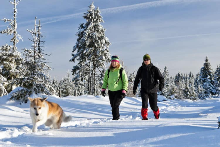 What Pants Should I Wear for Winter Hiking