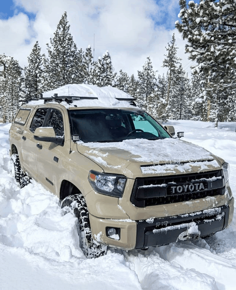 overland tundra in the snow