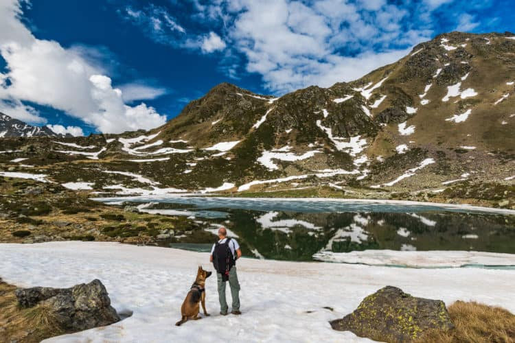 How Do I Prepare My Dog for Hiking
