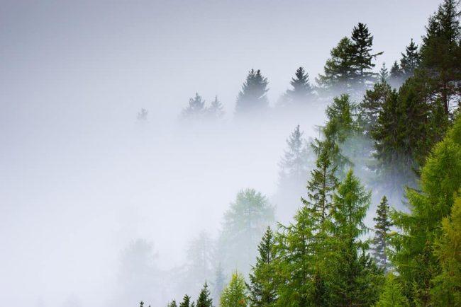 heavy fog hiking in the rain