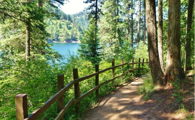 mineral ridge trail hike near coeur d alene idaho
