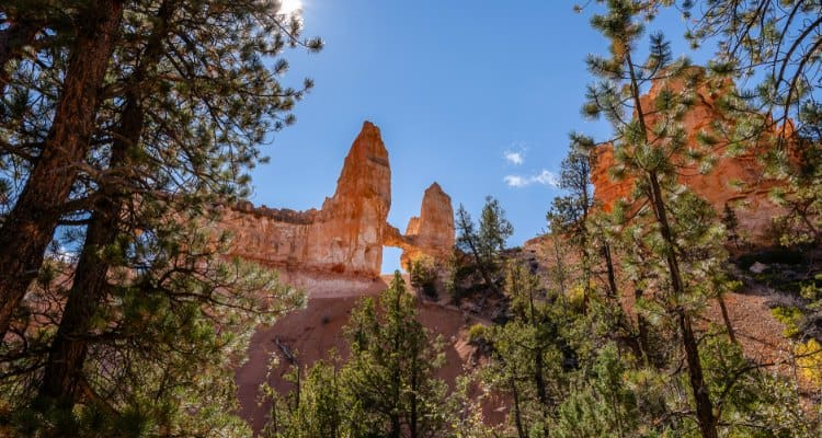 The 9 Best Hikes In Bryce Canyon National Park