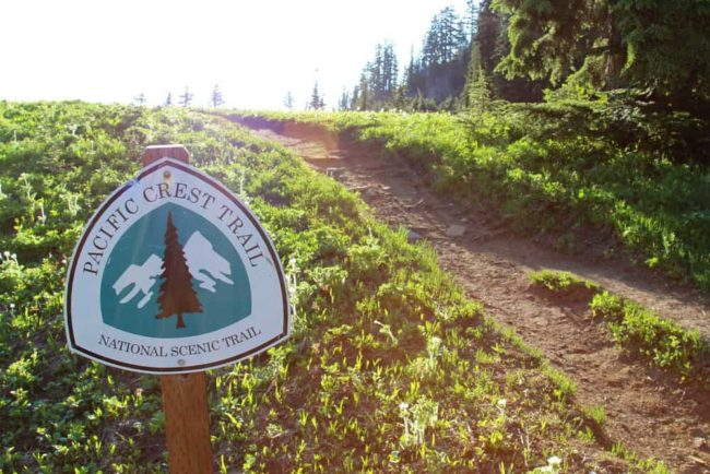 PCT trail sign with forest in background