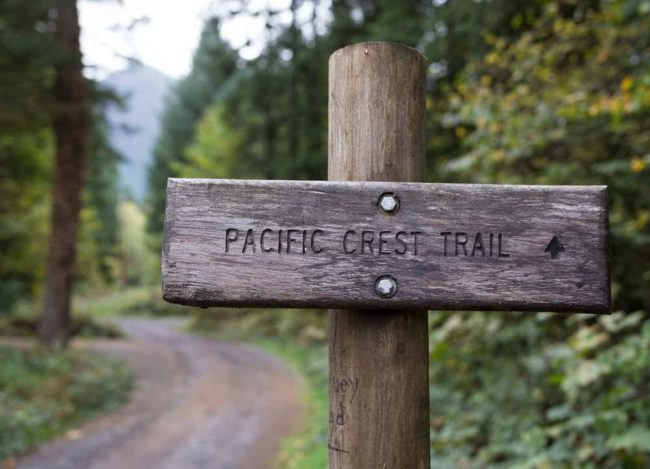 photo of a wooden PCT trail sign in a forest