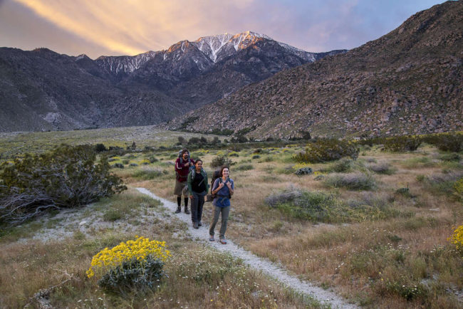 backpackers walking down a gravel path in a desert at sunset