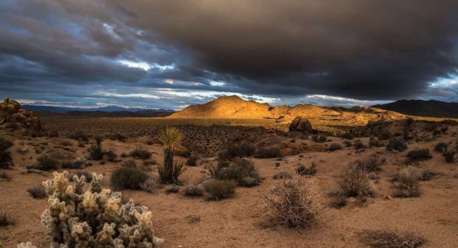 view of the desert with moody clouds overhead