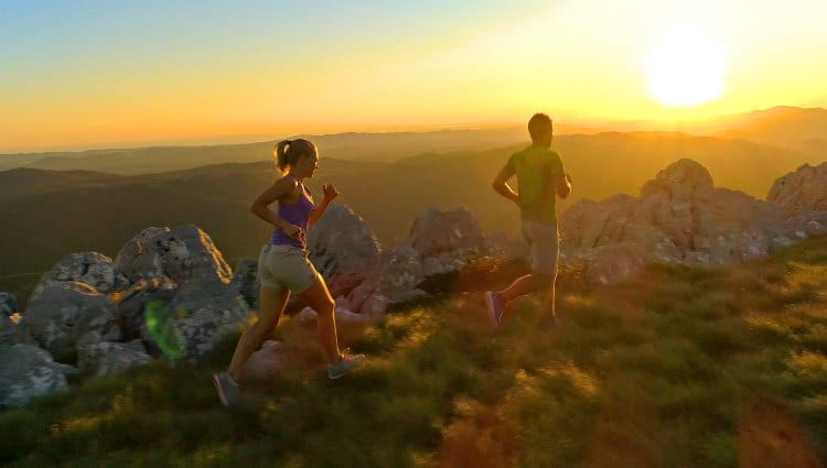 what is the difference between fell and trail running