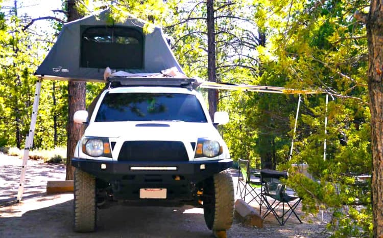 are roof top tents safe from bears