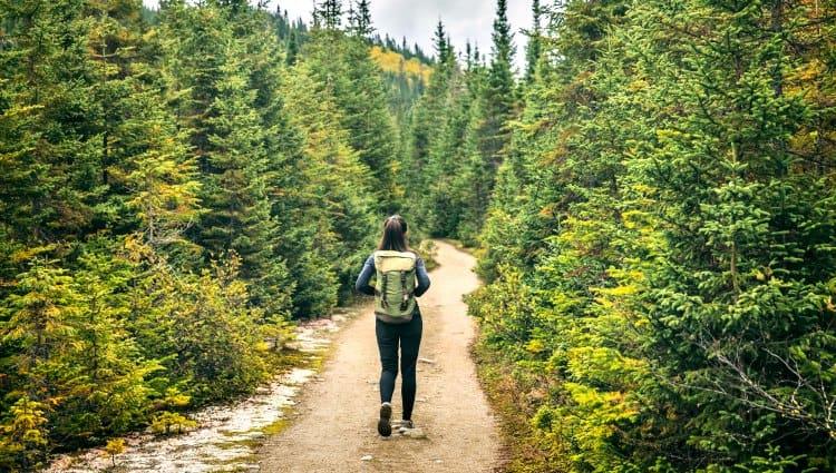are yoga pants good for hiking
