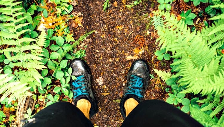 do trail running shoes need to be waterproof