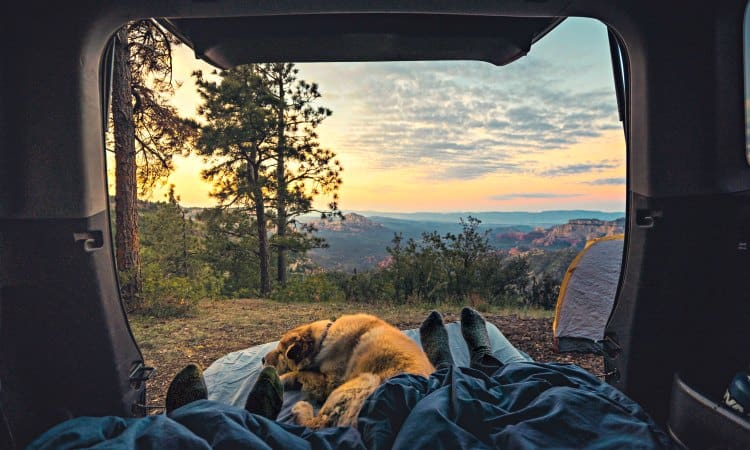 what is the best minivan for camping