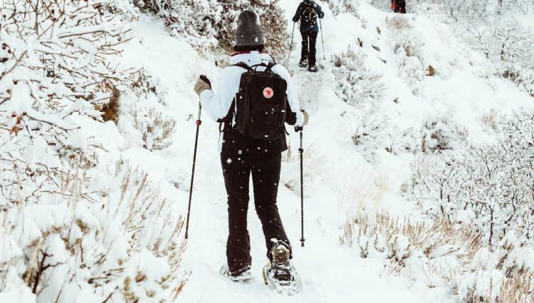 snowshoeing vs hiking